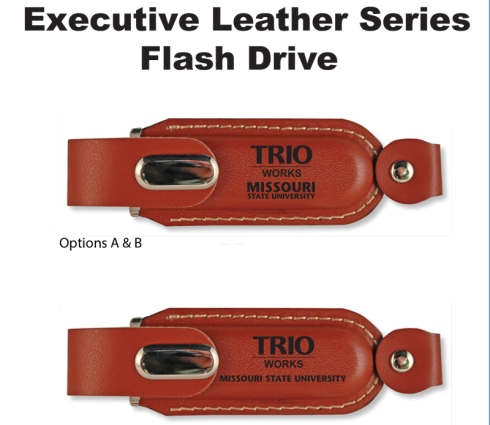 Brown leather casing