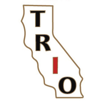 "Sold as Shown, bag of 500 lapel pins  (6 weeks need for production) ""TRO"" capital letters in black, with ""I"" in red. 1"" x ~ 5/8"" Die Struck Lapel Pin Bright Goldtone Finish Black, White, Red (PMS 186c) Soft Enamel Colorfill. Individually polybagged"